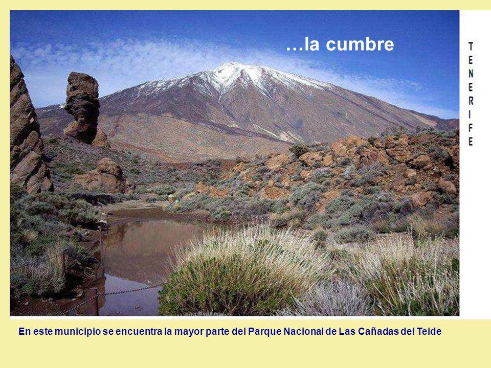 En este municipio se encuentra la mayor parte del Parque Nacional de Las Cañadas del Teide …la cumbre
