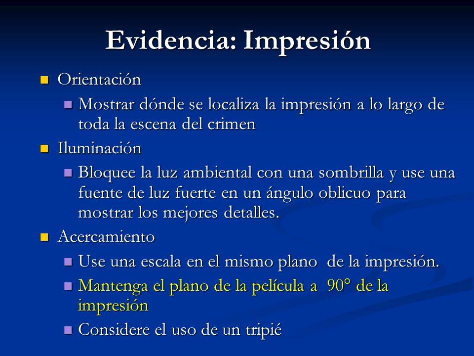 Evidencia: Impresión Orientación Orientación Mostrar dónde se localiza la impresión a lo largo de toda la escena del crimen Mostrar dónde se localiza