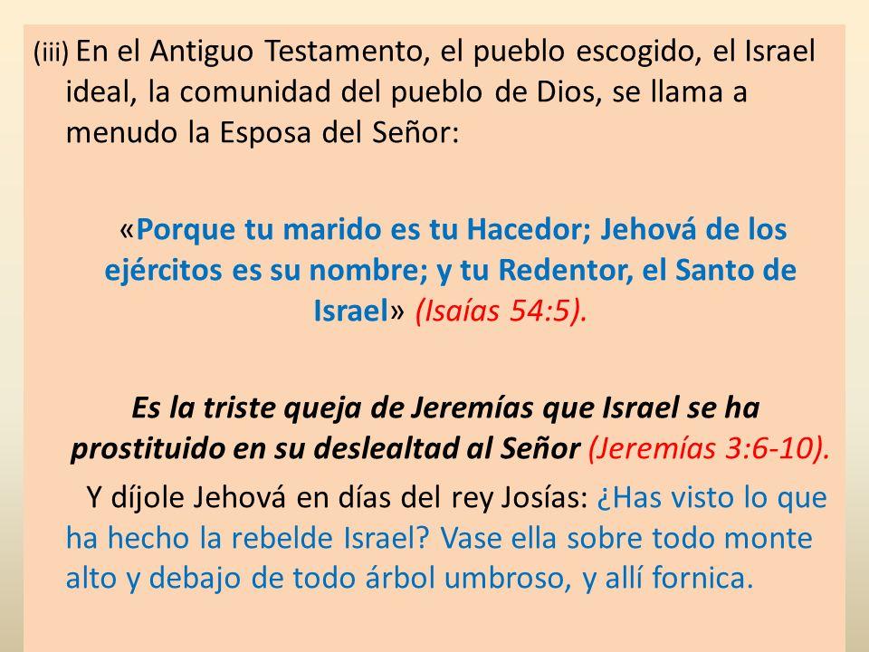 (iii) En el Antiguo Testamento, el pueblo escogido, el Israel ideal, la comunidad del pueblo de Dios, se llama a menudo la Esposa del Señor: «Porque t