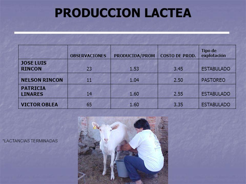 PRODUCCION LACTEA OBSERVACIONESPRODUCIDA/PROMCOSTO DE PROD.