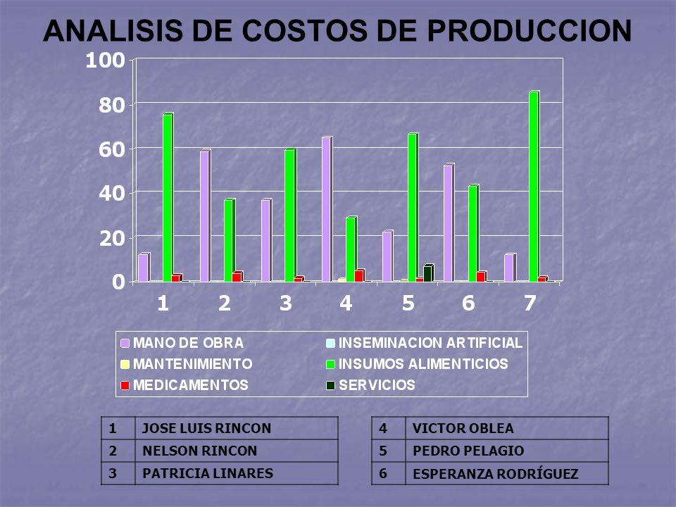 ANALISIS DE COSTOS DE PRODUCCION 1JOSE LUIS RINCON 2NELSON RINCON 3PATRICIA LINARES 4VICTOR OBLEA 5PEDRO PELAGIO 6ESPERANZA RODRÍGUEZ