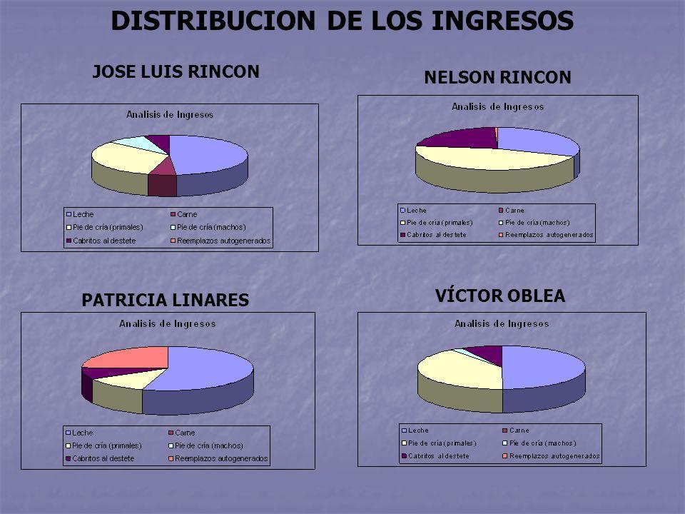 NELSON RINCON JOSE LUIS RINCON DISTRIBUCION DE LOS INGRESOS PATRICIA LINARES VÍCTOR OBLEA