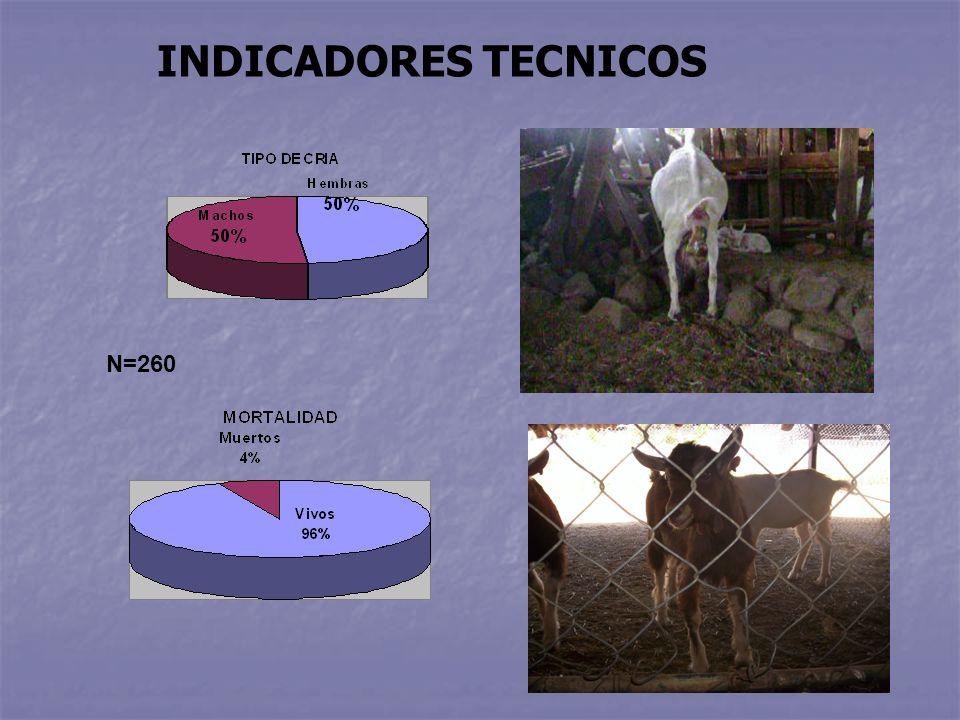 N=260 INDICADORES TECNICOS