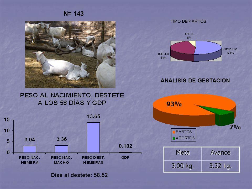 N= 143 Días al destete: 58.52MetaAvance 3.00 kg. 3.32 kg. ANALISIS DE GESTACION 93% 7%