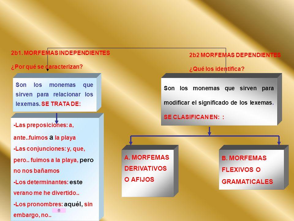 2b1. MORFEMAS INDEPENDIENTES ¿Por qué se caracterizan? 2b2 MORFEMAS DEPENDIENTES ¿Qué los identifica? Son los monemas que sirven para relacionar los l