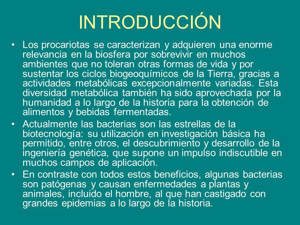5.Fisiología bacteriana 5.1. Nutrición.