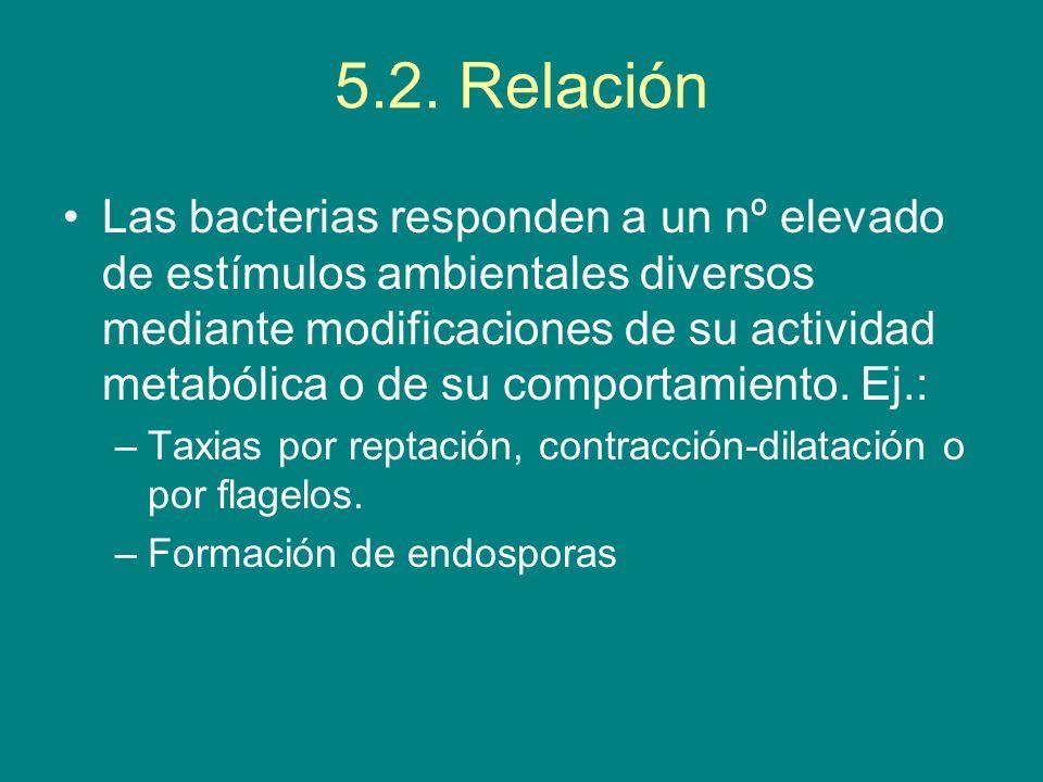 5.2. Relación Las bacterias responden a un nº elevado de estímulos ambientales diversos mediante modificaciones de su actividad metabólica o de su com