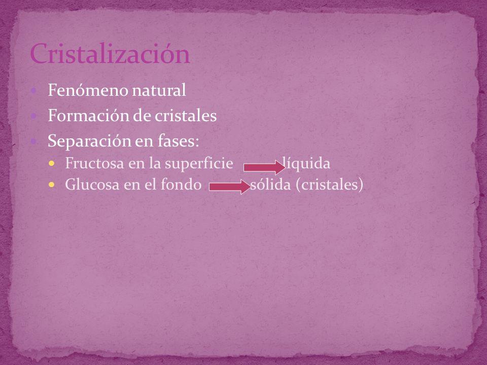 Fenómeno natural Formación de cristales Separación en fases: Fructosa en la superficie líquida Glucosa en el fondo sólida (cristales)