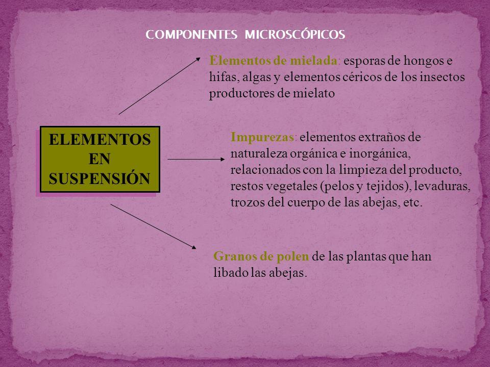 Elementos de mielada (HDE ) que son: esporas e hifas de hongos (Deuteromycotina), algas microscópicas (G.