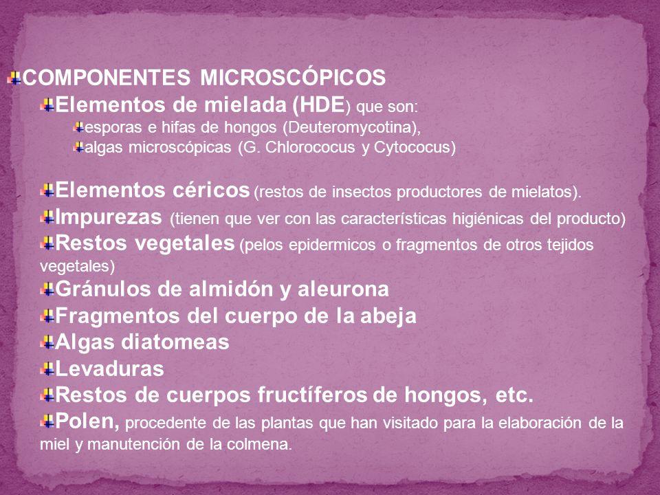 Elementos de mielada (HDE ) que son: esporas e hifas de hongos (Deuteromycotina), algas microscópicas (G. Chlorococus y Cytococus) Elementos céricos (