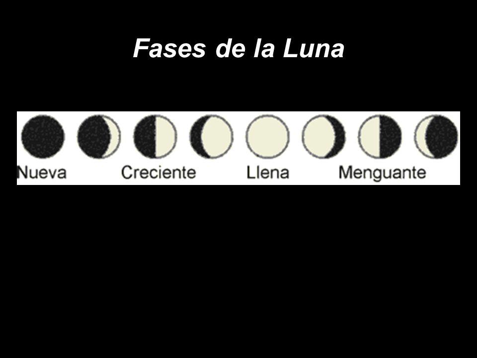 ¿Qué fracción de la superficie de la luna se ve desde la Tierra en 56 días.