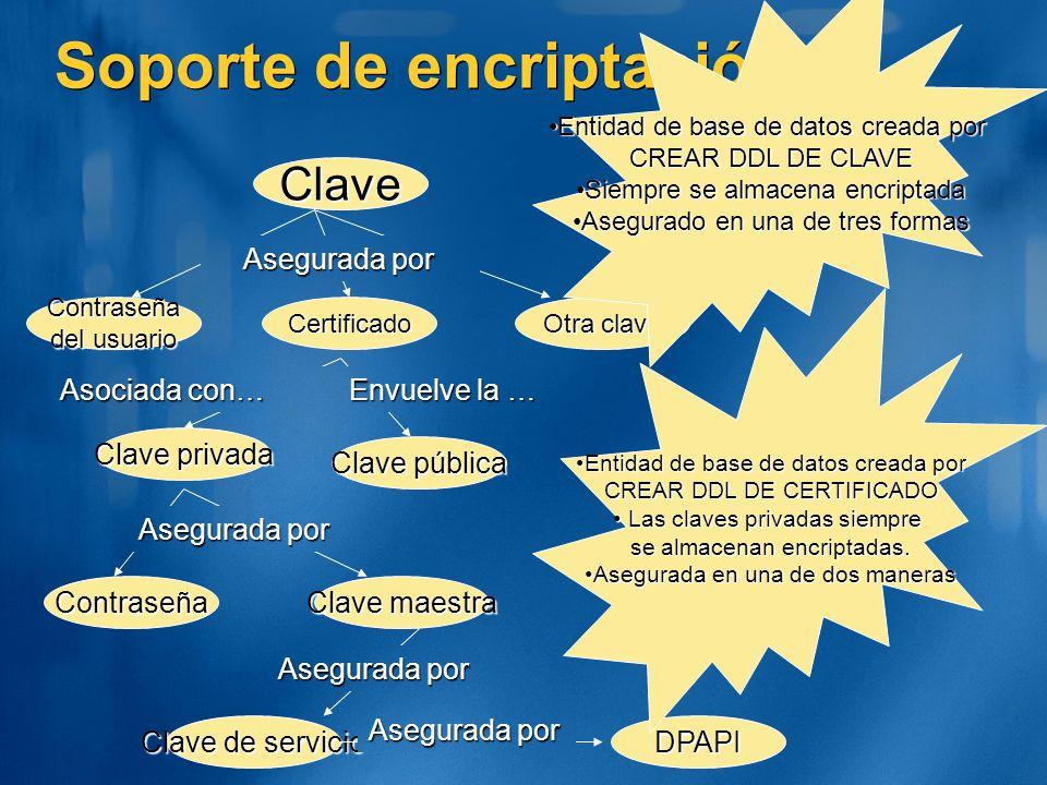Soporte de encriptación Clave Otra clave Contraseña del usuario Certificado Entidad de base de datos creada porEntidad de base de datos creada por CRE