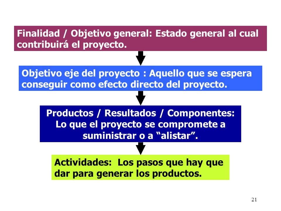 21 Finalidad / Objetivo general: Estado general al cual contribuirá el proyecto. Objetivo eje del proyecto : Aquello que se espera conseguir como efec