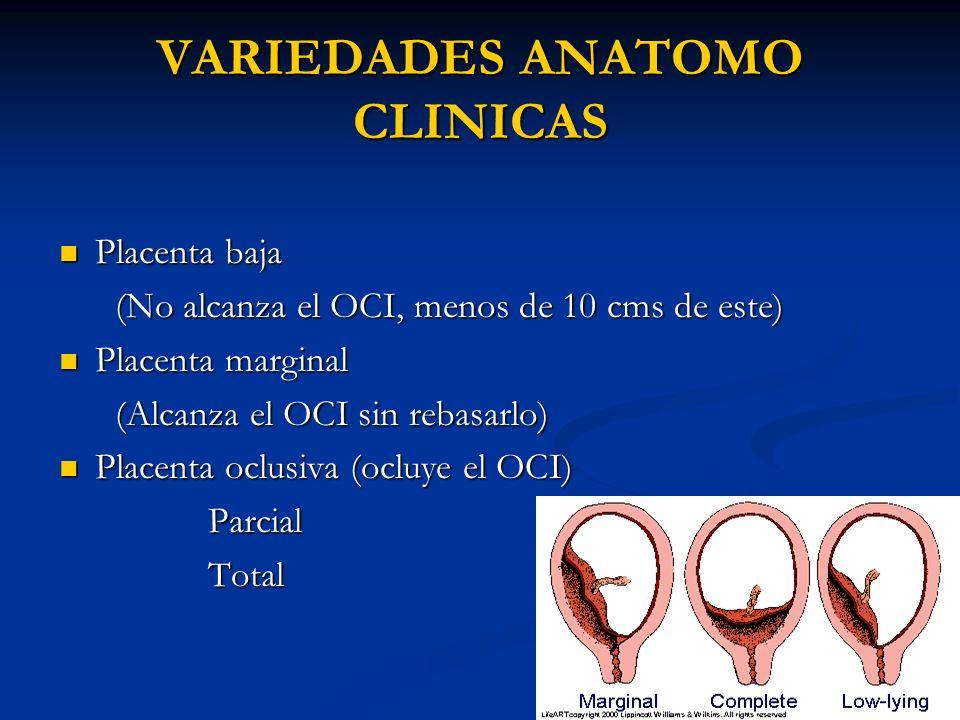 VARIEDADES ANATOMO CLINICAS Placenta baja Placenta baja (No alcanza el OCI, menos de 10 cms de este) (No alcanza el OCI, menos de 10 cms de este) Plac