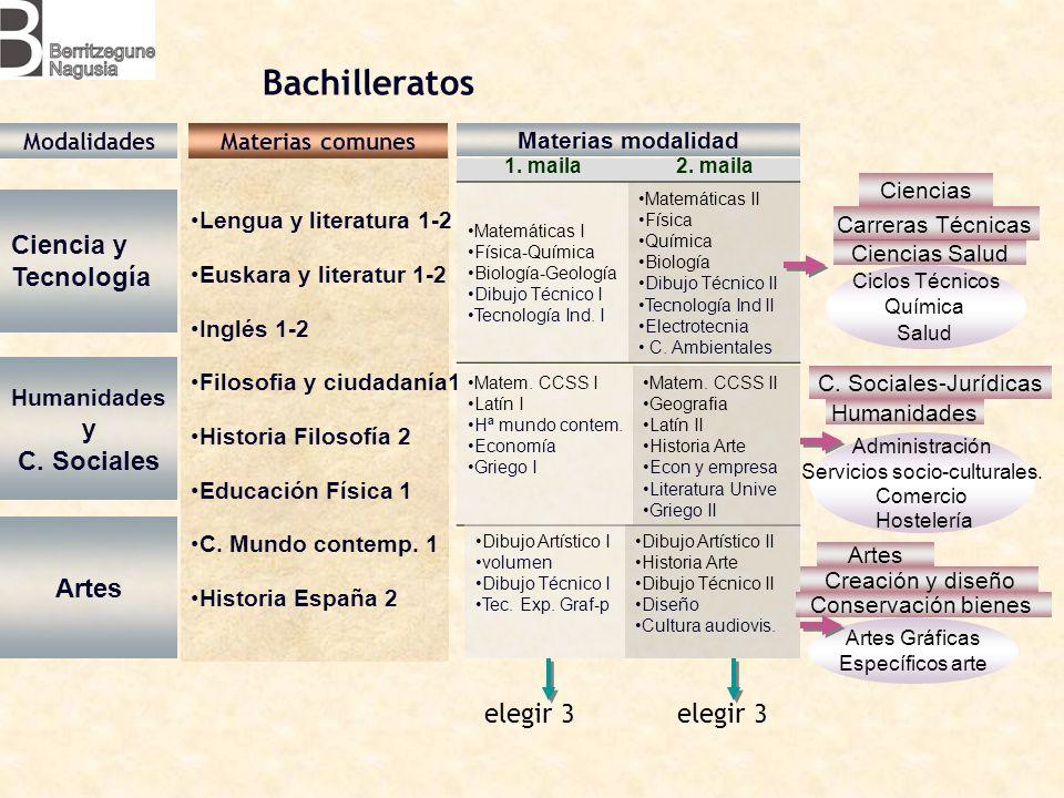 Lengua y literatura 1-2 Euskara y literatur 1-2 Inglés 1-2 Filosofia y ciudadanía1 Historia Filosofía 2 Educación Física 1 C.