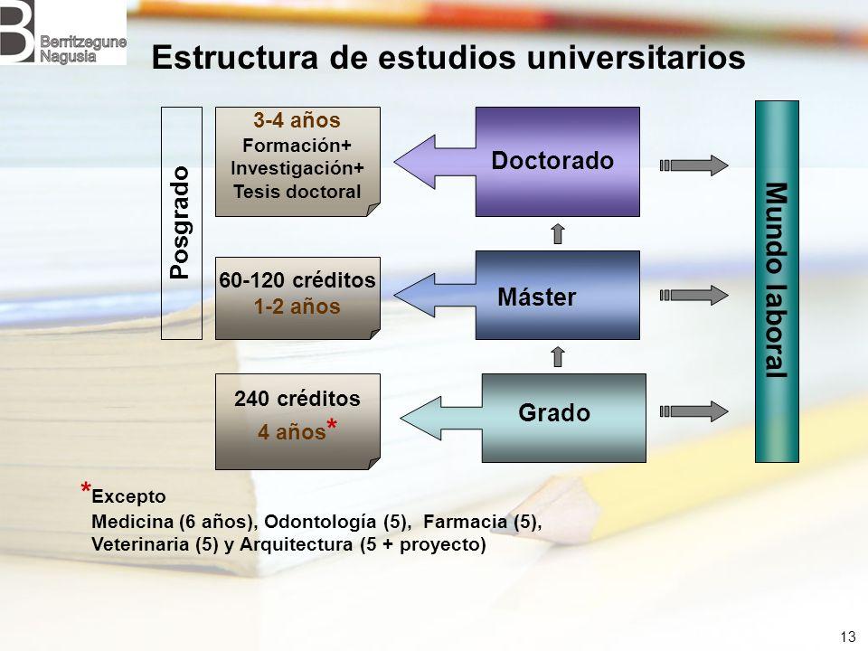 13 Estructura de estudios universitarios Mundo laboral Posgrado * Excepto Medicina (6 años), Odontología (5), Farmacia (5), Veterinaria (5) y Arquitec