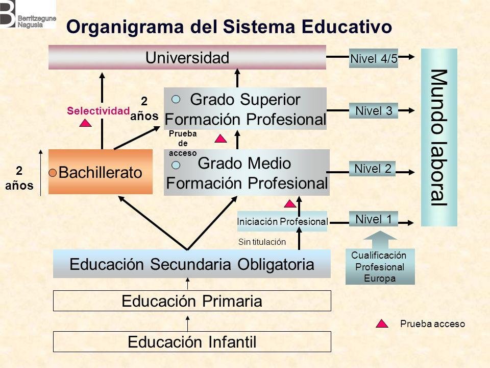 Organigrama del Sistema Educativo Educación Infantil Educación Primaria Educación Secundaria Obligatoria Universidad Bachillerato Grado Superior Forma