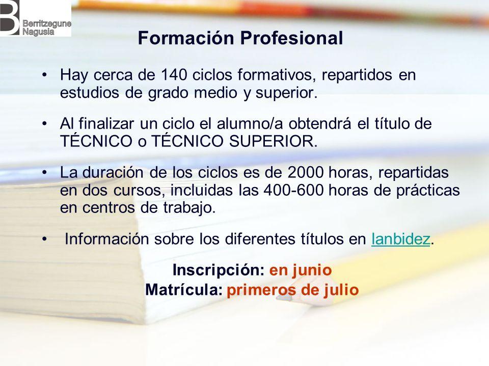 Formación Profesional Hay cerca de 140 ciclos formativos, repartidos en estudios de grado medio y superior.