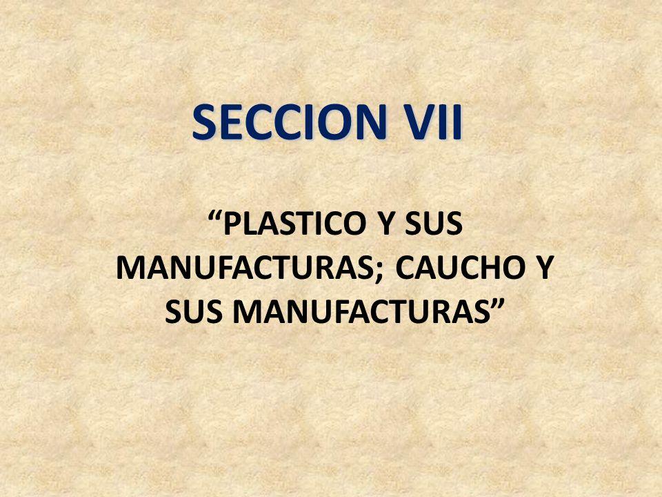 SECCION VII PLASTICO Y SUS MANUFACTURAS; CAUCHO Y SUS MANUFACTURAS