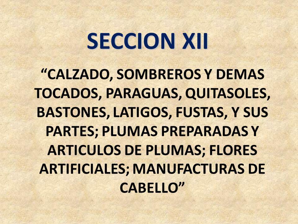 SECCION XII CALZADO, SOMBREROS Y DEMAS TOCADOS, PARAGUAS, QUITASOLES, BASTONES, LATIGOS, FUSTAS, Y SUS PARTES; PLUMAS PREPARADAS Y ARTICULOS DE PLUMAS