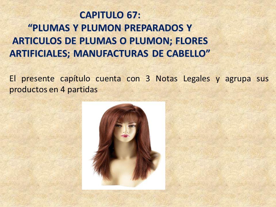 CAPITULO 67: PLUMAS Y PLUMON PREPARADOS Y ARTICULOS DE PLUMAS O PLUMON; FLORES ARTIFICIALES; MANUFACTURAS DE CABELLO El presente capítulo cuenta con 3