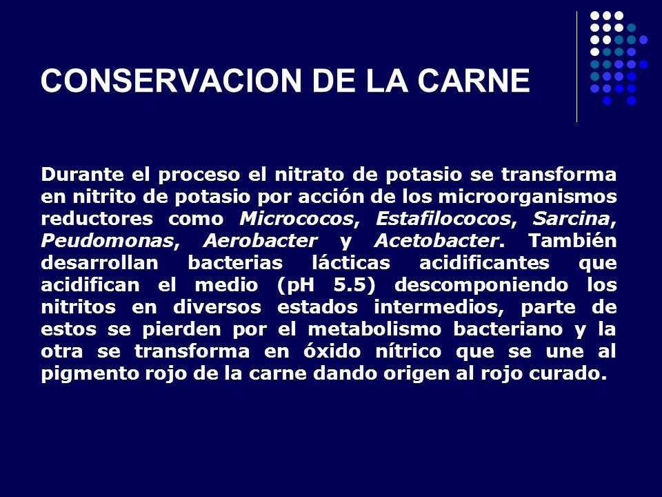 CONSERVACION DE LA CARNE Durante el proceso el nitrato de potasio se transforma en nitrito de potasio por acción de los microorganismos reductores com