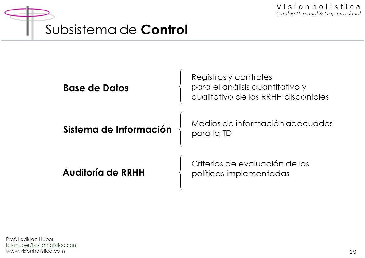 Prof. Ladislao Huber lalohuber@visionholistica.com www.visionholistica.com 18 V i s i o n h o l i s t i c a Cambio Personal & Organizacional Subsistem