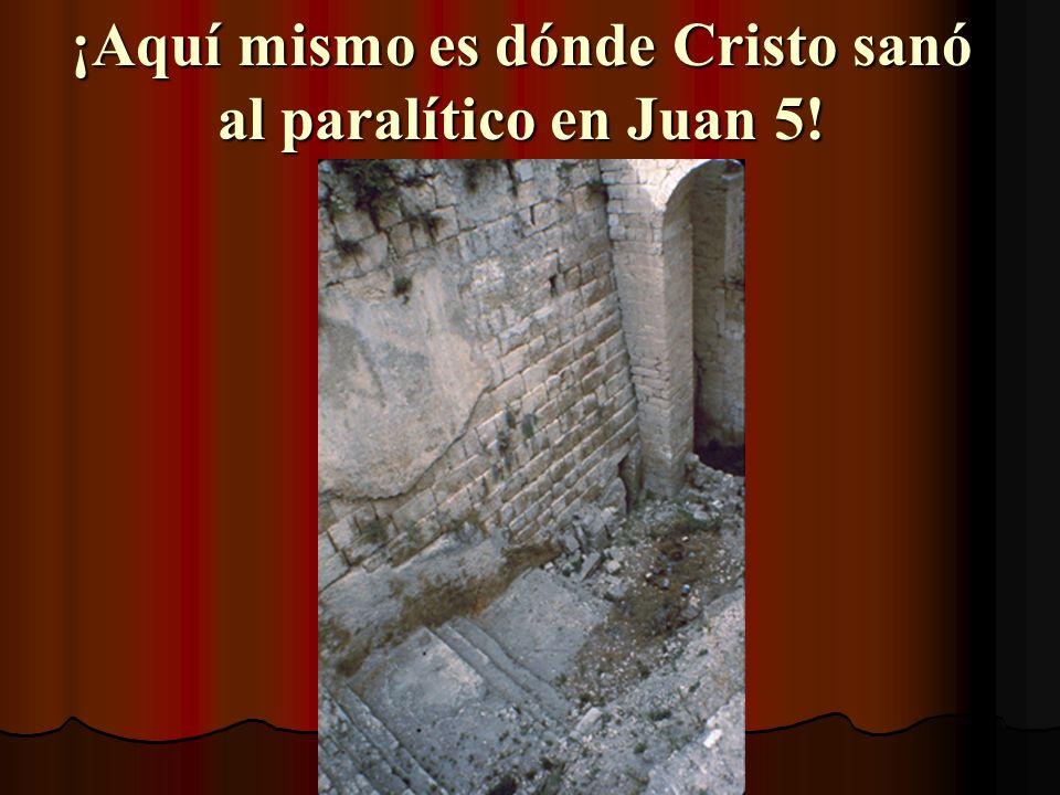 El Estanque de Betesda Cubierto en escombros desde 70 dC, fue descubierto en 1956 Tiene 5 pórticos, como dice Juan 5:2