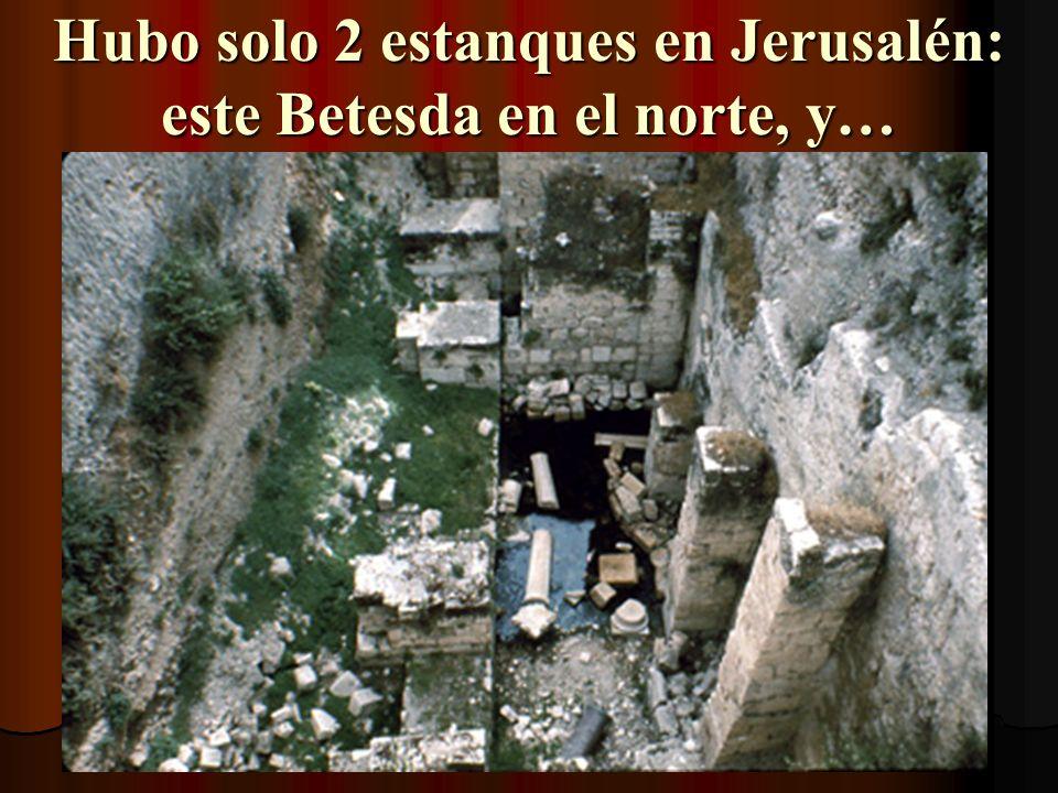¡Aquí mismo es dónde Cristo sanó al paralítico en Juan 5!