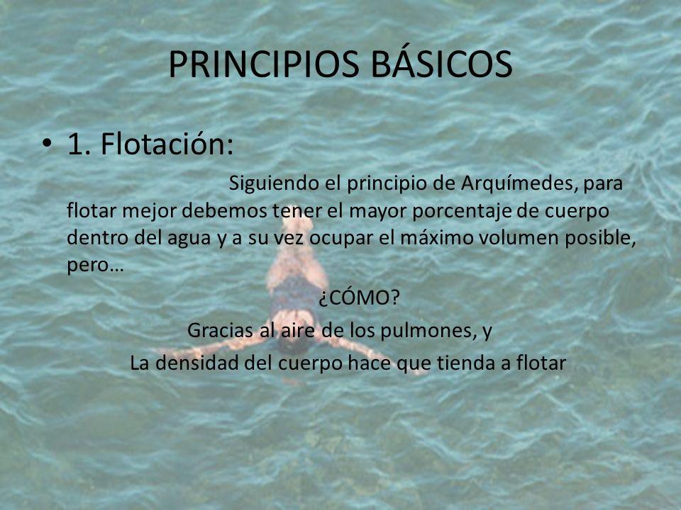 PRINCIPIOS BÁSICOS 1. Flotación: Siguiendo el principio de Arquímedes, para flotar mejor debemos tener el mayor porcentaje de cuerpo dentro del agua y