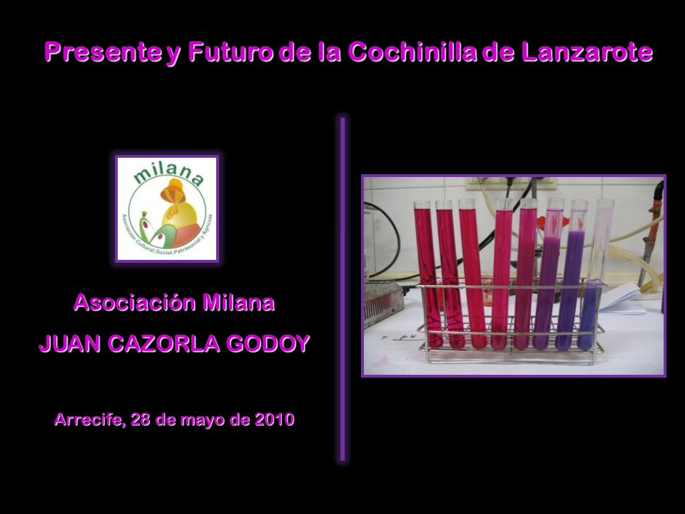Presente y Futuro de la Cochinilla de Lanzarote Asociación Milana JUAN CAZORLA GODOY Arrecife, 28 de mayo de 2010