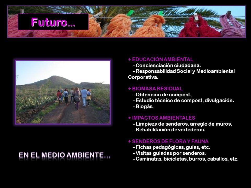 + EDUCACIÓN AMBIENTAL - Concienciación ciudadana.