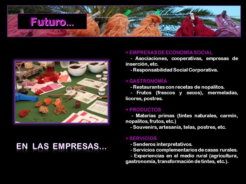 + EMPRESAS DE ECONOMÍA SOCIAL - Asociaciones, cooperativas, empresas de inserción, etc. - Responsabilidad Social Corporativa. + GASTRONOMÍA - Restaura