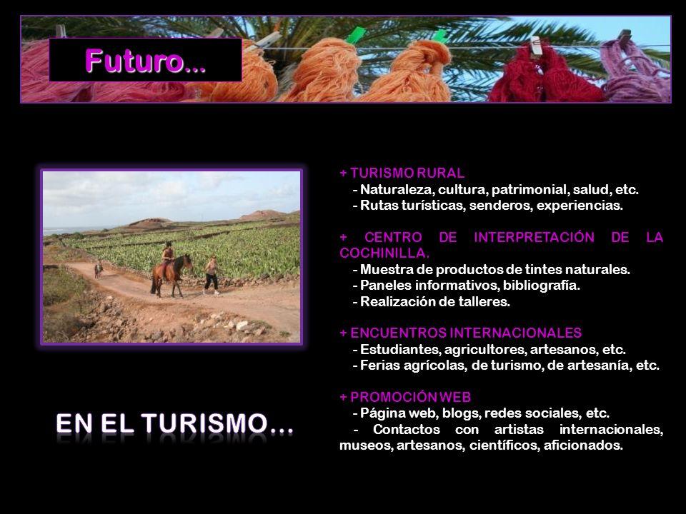 + TURISMO RURAL - Naturaleza, cultura, patrimonial, salud, etc. - Rutas turísticas, senderos, experiencias. + CENTRO DE INTERPRETACIÓN DE LA COCHINILL