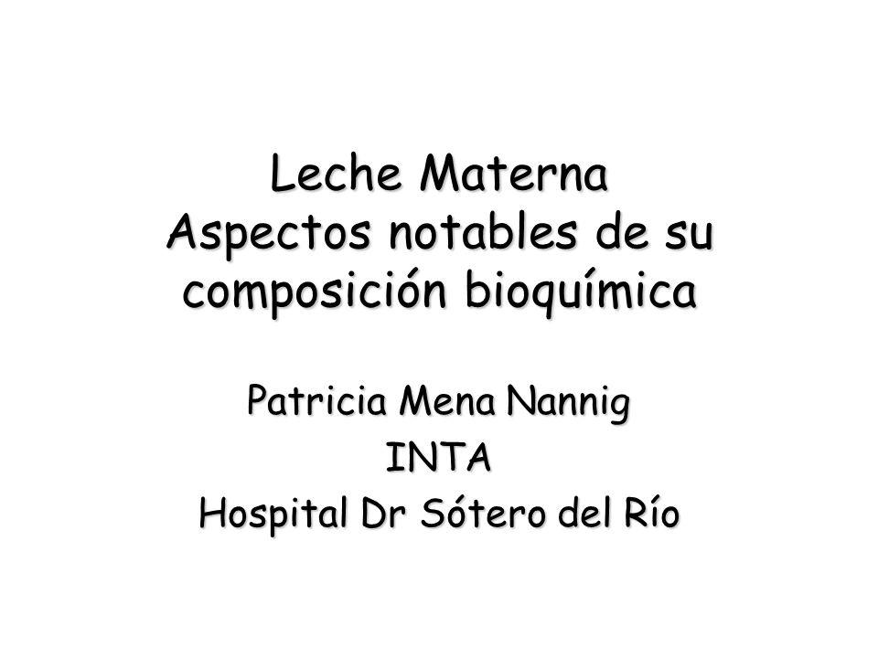 Leche Materna Aspectos notables de su composición bioquímica Patricia Mena Nannig INTA Hospital Dr Sótero del Río