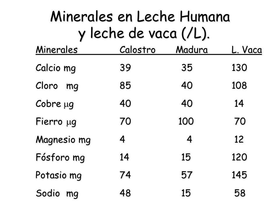 Minerales en Leche Humana y leche de vaca (/L). MineralesCalostroMaduraL. Vaca Calciomg39 35130 Cloro mg85 40108 Cobre g40 40 14 Fierro g 70 100 70 Ma