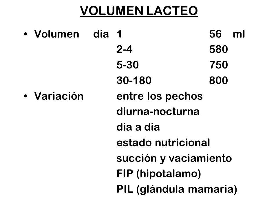 VOLUMEN LACTEO Volumen dia 156 ml 2-4580 5-30750 30-180800 Variación entre los pechos diurna-nocturna dia a dia estado nutricional succión y vaciamien