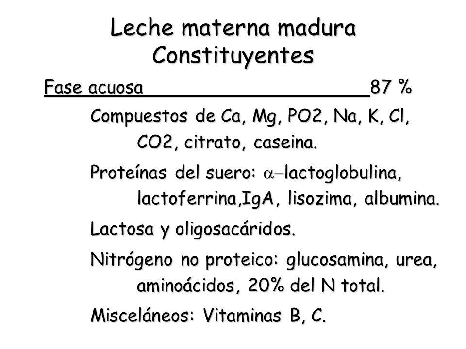 Leche materna madura Constituyentes Fase acuosa87 % Compuestos de Ca, Mg, PO2, Na, K, Cl, CO2, citrato, caseina. Proteínas del suero: lactoglobulina,