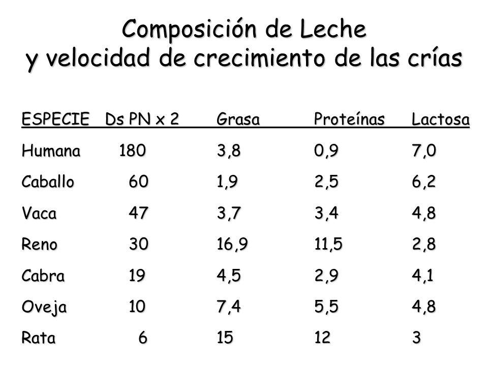 Composición de Leche y velocidad de crecimiento de las crías ESPECIE Ds PN x 2GrasaProteínasLactosa Humana1803,80,97,0 Caballo 601,92,56,2 Vaca 473,73