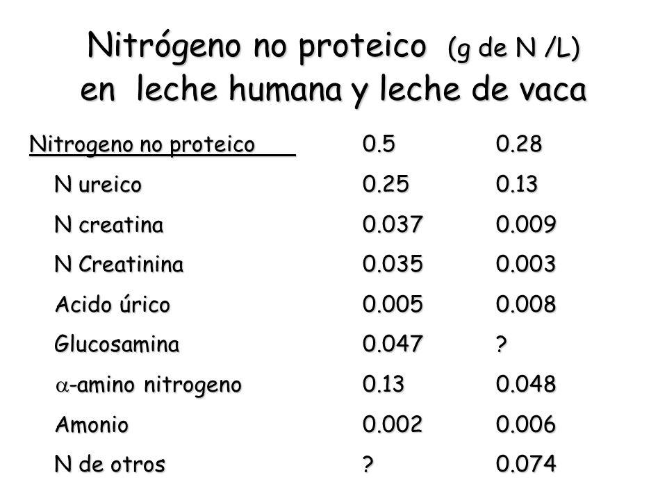 Nitrógeno no proteico (g de N /L) en leche humana y leche de vaca Nitrogeno no proteico0.50.28 N ureico0.250.13 N creatina0.0370.009 N Creatinina0.035