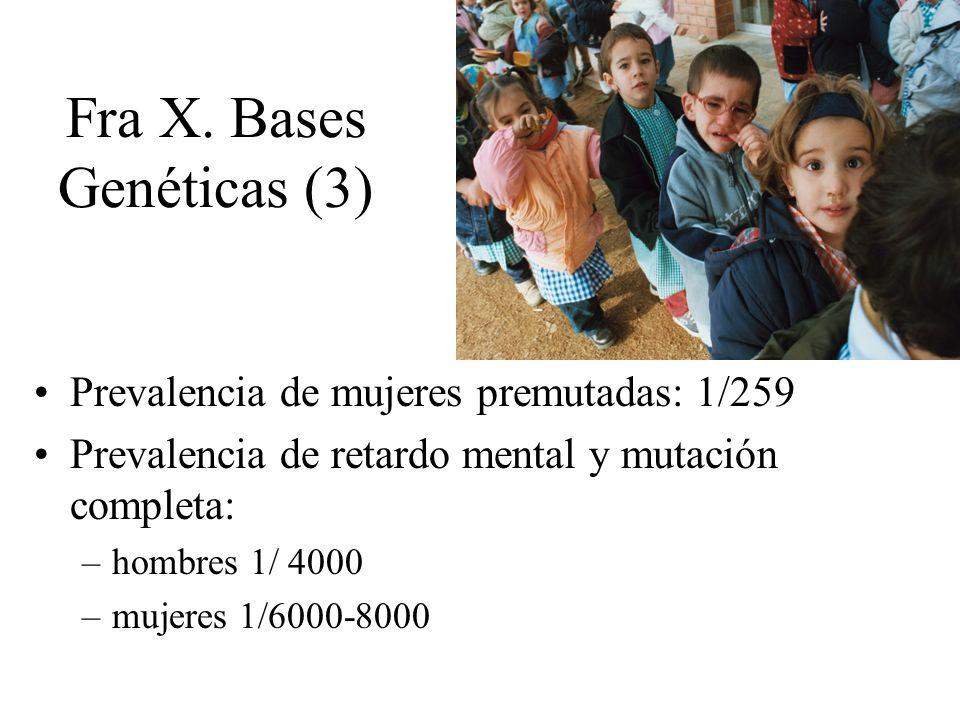 Fra X. Bases Genéticas (3) Prevalencia de mujeres premutadas: 1/259 Prevalencia de retardo mental y mutación completa: –hombres 1/ 4000 –mujeres 1/600