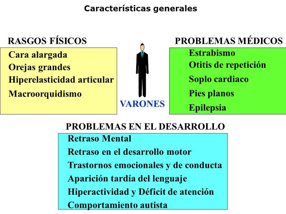 Características generales VARONES Cara alargada Orejas grandes Hiperelasticidad articular Macroorquidismo RASGOS FÍSICOSPROBLEMAS MÉDICOS Estrabismo O