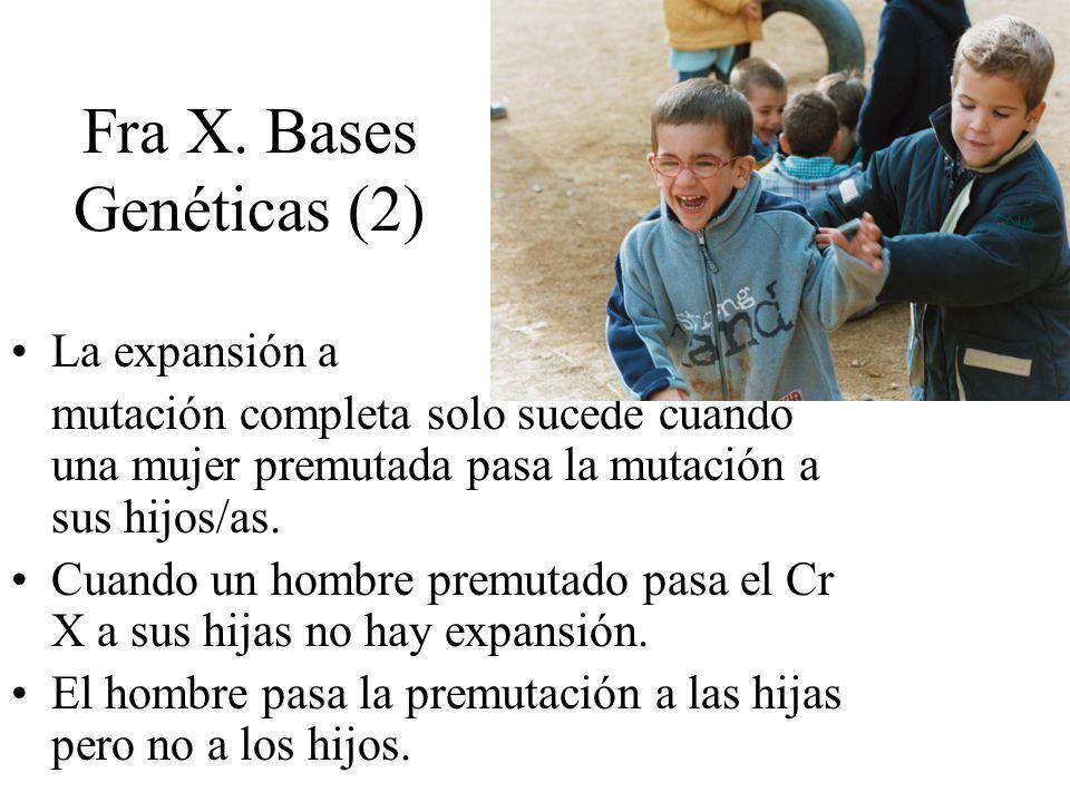 Fra X. Bases Genéticas (2) La expansión a mutación completa solo sucede cuando una mujer premutada pasa la mutación a sus hijos/as. Cuando un hombre p