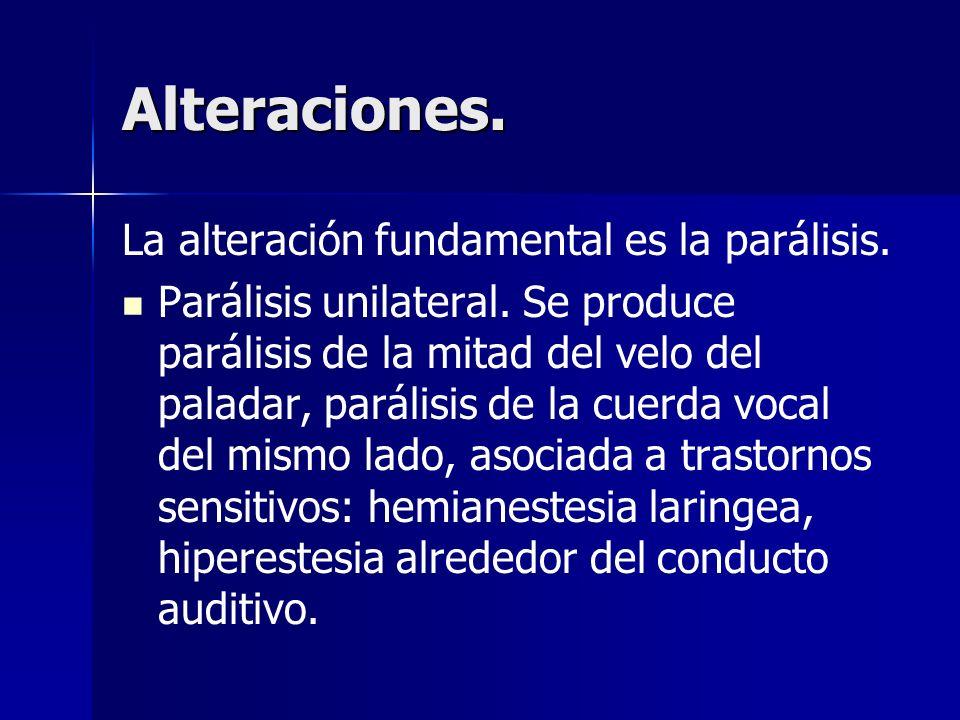 Alteraciones. La alteración fundamental es la parálisis. Parálisis unilateral. Se produce parálisis de la mitad del velo del paladar, parálisis de la
