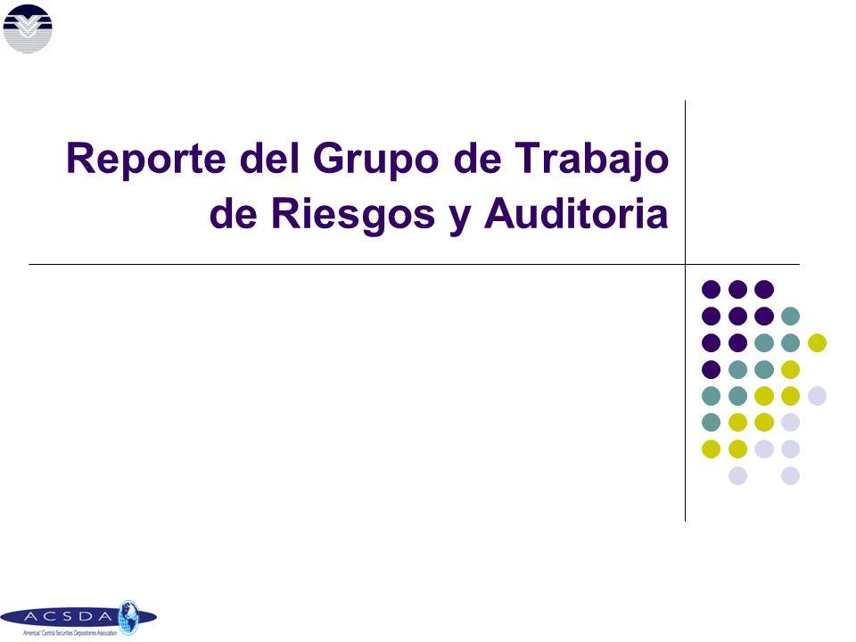 Reporte del Grupo de Trabajo de Riesgos y Auditoria