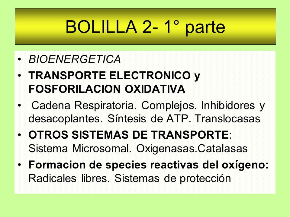 BOLILLA 2- 1° parte BIOENERGETICA TRANSPORTE ELECTRONICO y FOSFORILACION OXIDATIVA Cadena Respiratoria. Complejos. Inhibidores y desacoplantes. Síntes
