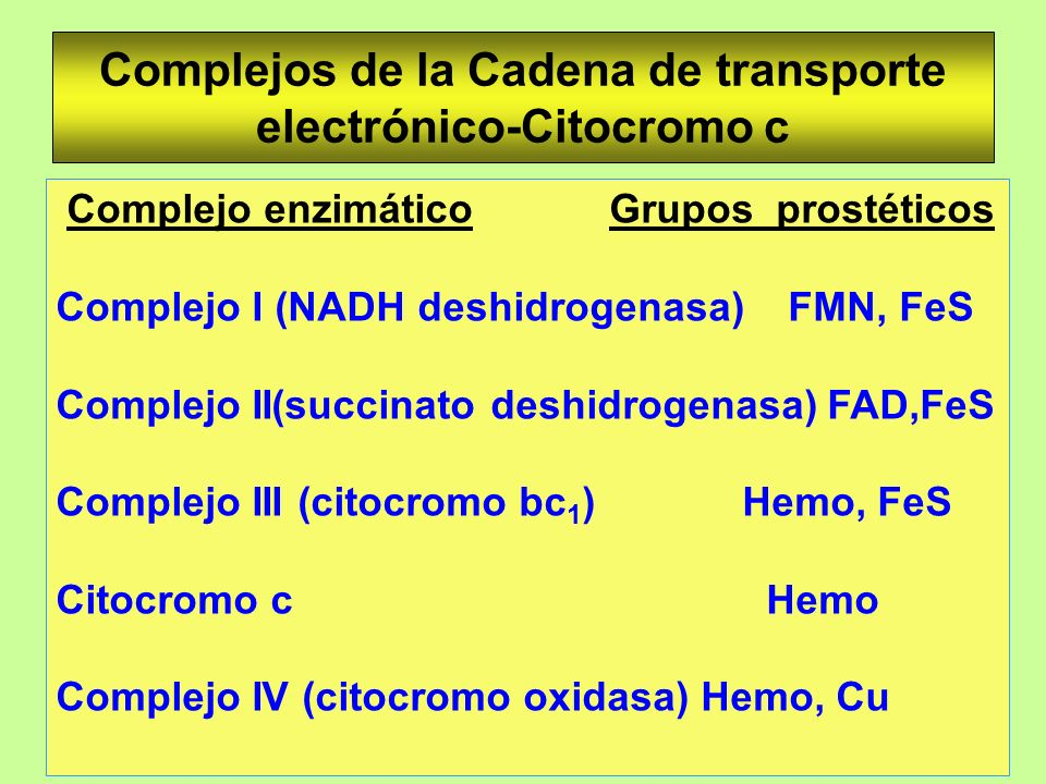 Complejos de la Cadena de transporte electrónico-Citocromo c Complejo enzimático Grupos prostéticos Complejo I (NADH deshidrogenasa) FMN, FeS Complejo