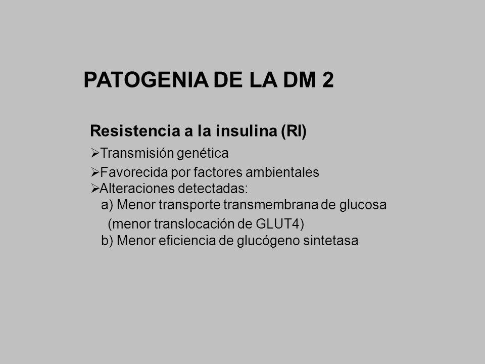 PATOGENIA DE LA DM 2 Resistencia a la insulina (RI) Transmisión genética Favorecida por factores ambientales Alteraciones detectadas: a) Menor transpo