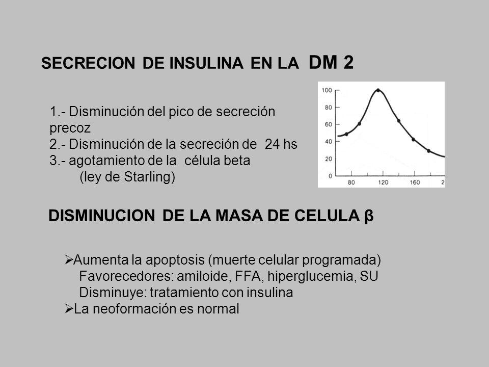 SECRECION DE INSULINA EN LA DM 2 1.- Disminución del pico de secreción precoz 2.- Disminución de la secreción de 24 hs 3.- agotamiento de la célula be