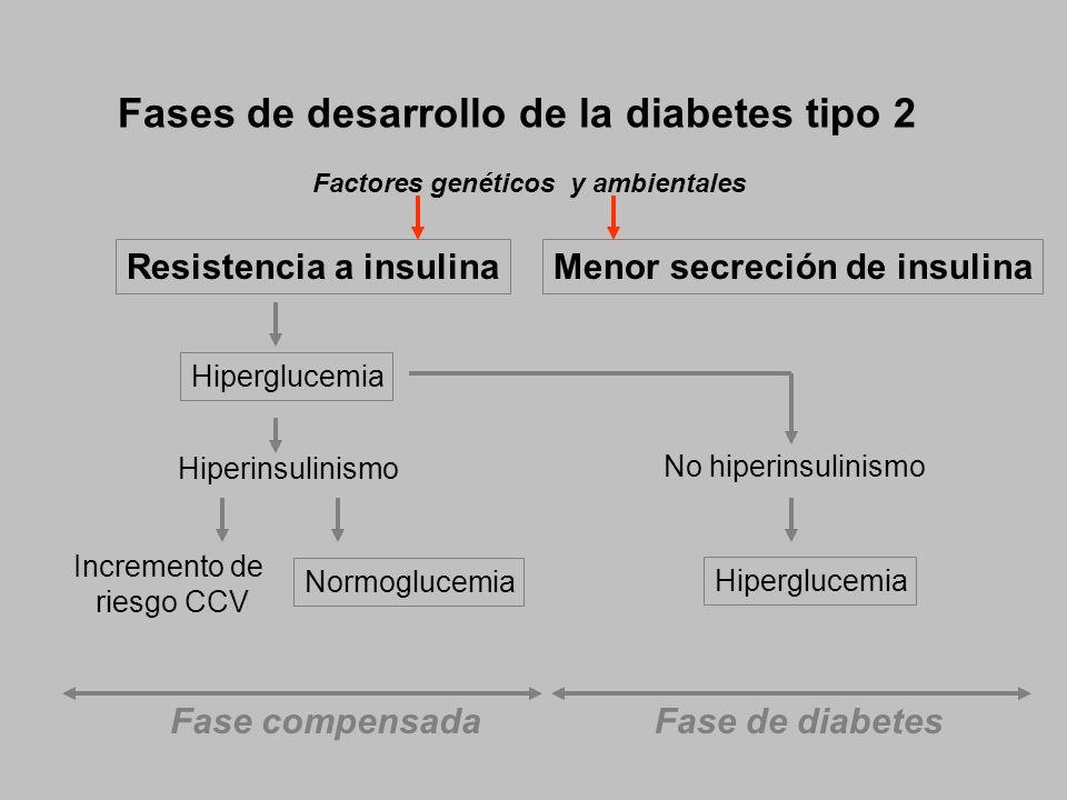 Fases de desarrollo de la diabetes tipo 2 Resistencia a insulina Hiperinsulinismo Hiperglucemia Normoglucemia Incremento de riesgo CCV Menor secreción